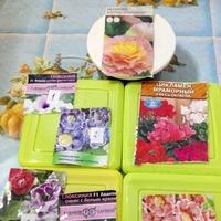 Начало посевной:комнатные цветы