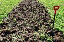 Если землю не копать, урожая не видать
