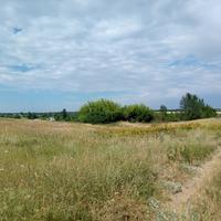 Прогулка окрестностями. Лето 2018.