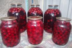 Консервация вишни: компот и вишня в банке