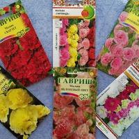 Новая партия цветочных семян