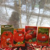Март 2018: посадила на рассаду томаты.
