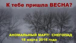 Аномальный март в Украине. Весна, где ты?