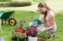 Знакомим детей с ботаникой: несколько идей
