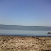 Прогулка на залив