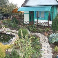 Красота и порядок в саду