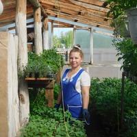 Огород... что наросло к концу мая)))