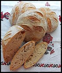 Хлеб недельной ферментации. Выпечка на бакферменте Секова.