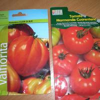 Есть ли смысл выращивать иностранные томаты?