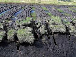 Торф в сельском хозяйстве