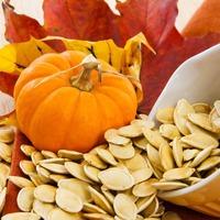 Семена тыквы - польза для женщин и для мужчин