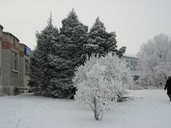 Причуды Матушки Зимы