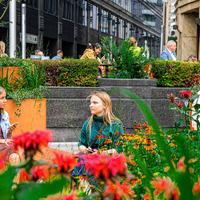 В московских летних садах расцвели лиатрис, гортензия и эхинацея: ландшафтные проекты фестиваля «Цветочный Джем» меняют цвет и форму