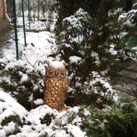 Зима вернулась (