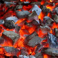 Древесный уголь: каков он в качестве удобрения?