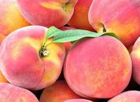 Созревают персики в Поволжье. Подготовка