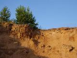 Как улучшить почву на дачном участке? 2 способа.  Как сделать плодородную грядку