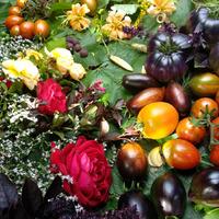 АВГУСТ - немного обо всем, но томаты и клубника - отдельно!