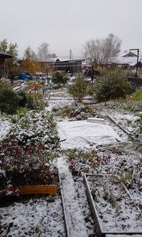Пришла зима... отворяй ворота