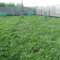 Как исправить геометрически правильные сад и огород?