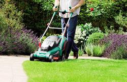 Как сделать газон красивым: 5 советов