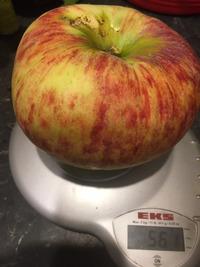 Большое яблоко