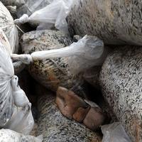 Отработанные грибные блоки как удобрение