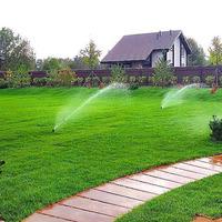 Жидкий газон: плюсы и минусы
