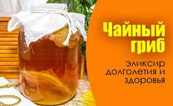 Быть или не быть... чайному грибу? Рецепт яблочного уксуса.