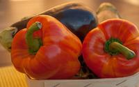 Что посеять в феврале: баклажаны, перец или томаты?