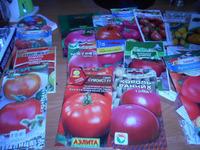 Сорта помидор на 2020 год.