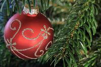 Как использовать елочку после новогодних праздников