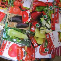 Продам излишки семян перца, баклажан, томатов производства Сербии, Италии, Германии. Часть третья, не заключительная