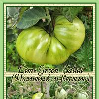 Конец июля, разнообразные томаты на сибирской даче. Перепутаница. Вторая грядка.