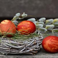 Крашенки, писанки, крапанки и дряпанки или как покрасить яйца на Пасху