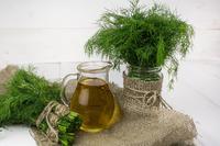 Как хранить зелень в свежем и замороженном виде