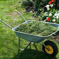 Как мульчировать травой, чтоб повысить урожай
