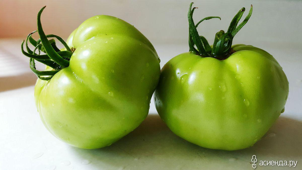 Какие фрукты и овощи можно снимать незрелыми