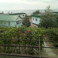 Отдых в Новой Ялте на Азовском море.