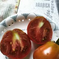 """О сорте томата """"Трюфель"""" и не только."""