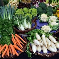 Дачные знахари: четыре овоща, которые борются с простудными заболеваниями