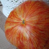 Два сорта помидор, которых не было в природе или продолжение полосатой истории.