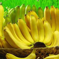 Бананы и наше здоровье