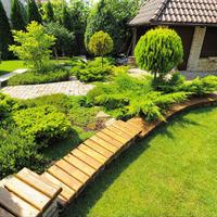 Как посадить газон: с решёткой или без неё