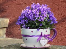 Нарядный горшочек для цветов своими руками