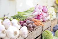 Какие овощи посадить под зиму