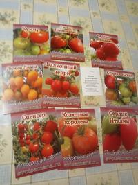 Новые томаты в моей коллекции