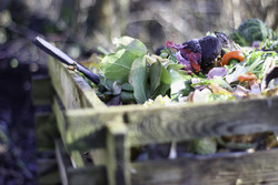 Растительные остатки – на теплые грядки